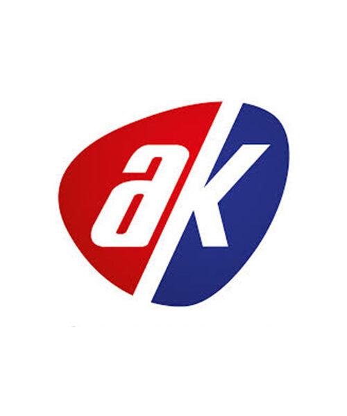 aslankaya group